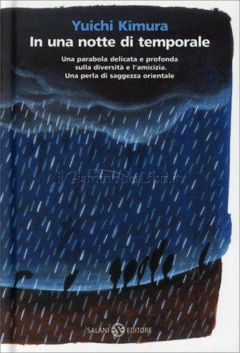 copertina libro notte temporale