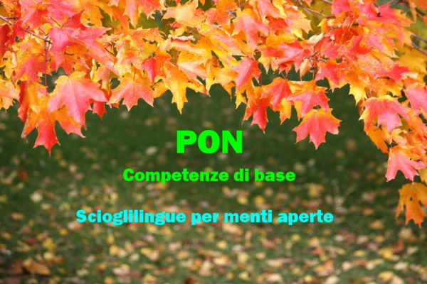 pon_base